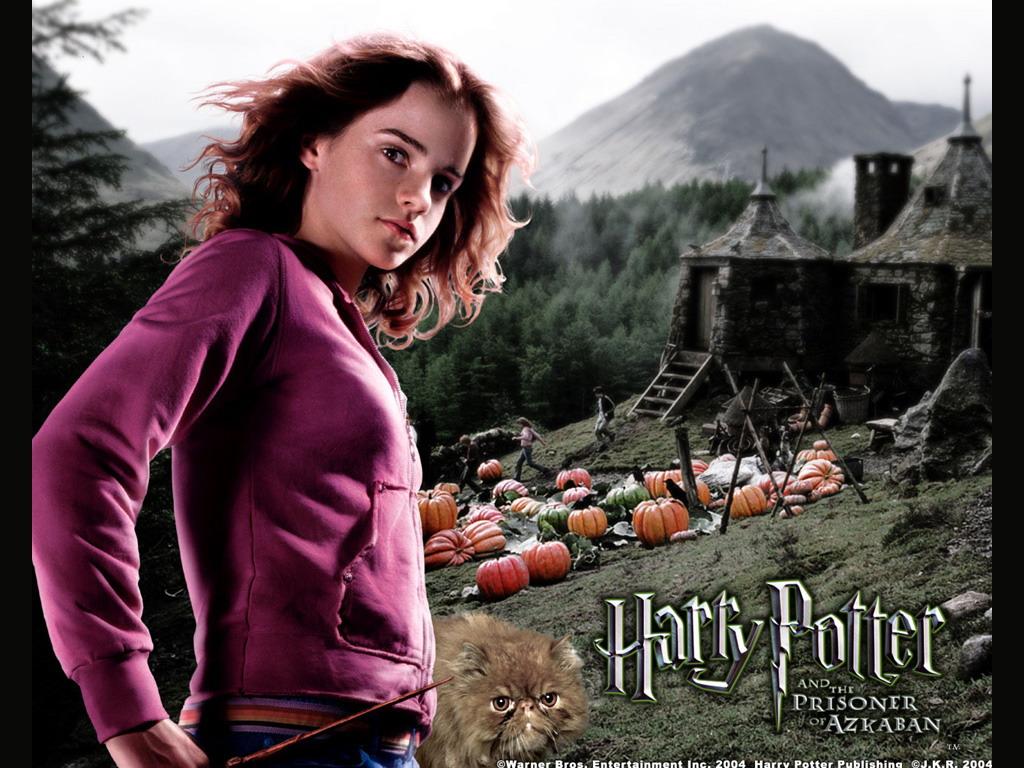 Гарри поттер и узник азкабана harry potter